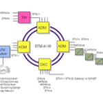 SDH Network